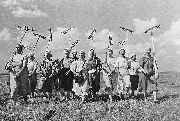 Советские фильмы про колхозы